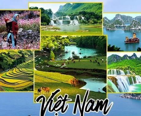 ベトナム語↔日本語 翻訳致します 生活からビジネスまでの幅広い翻訳をお任せください!!! イメージ1