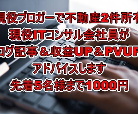 ブログ記事&収益UP&PVUPのアドバイスします 現役ブロガーで不動産2件所有の現役ITコンサル会社員 イメージ1