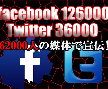 【19万6000人】のFacebook&Twitter媒体であなたのココナラサービスを宣伝します‼︎ イメージ1