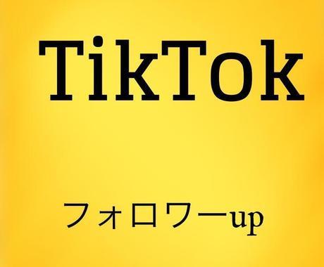 TikTokのフォロワー+500人増やしまます 世界中の方にあなたのTikTokのフォロワーになって貰おう! イメージ1
