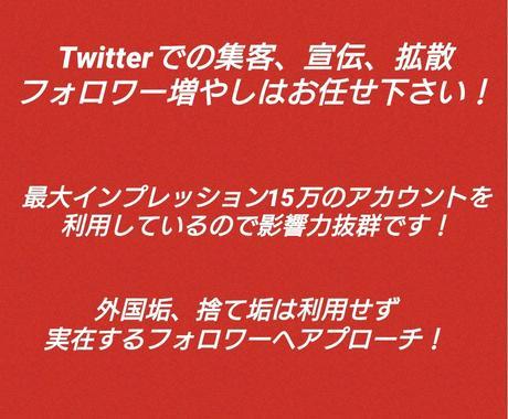 Twitterフォロワーを250人以上増やします 外国垢、捨て垢無し!最大インプレッション15万! イメージ1