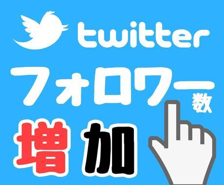 Twitterのフォロワーを+300増やします フォロワーが目標値になるまでグローバルに拡散し続けます! イメージ1