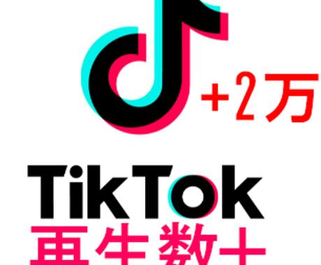 TikTokの再生数が増えるように拡散させます 【いいね数保証オプションあり】再生数2万から100万まで対応 イメージ1