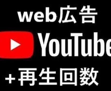 世界拡散■YouTube再生回数1000増やします web広告で世界のリアルユーザーに拡散する事により増加 イメージ1