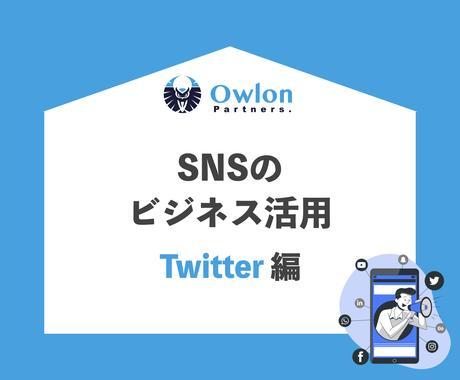 SNSのビジネス活用のノウハウを販売します 【Twitter編】SNSマーケティングを始めませんか イメージ1