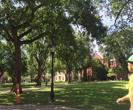 米国留学のためのCV、エッセイコメントします アイビーリーグ卒業・現役名門大PhD生によるコメント イメージ1