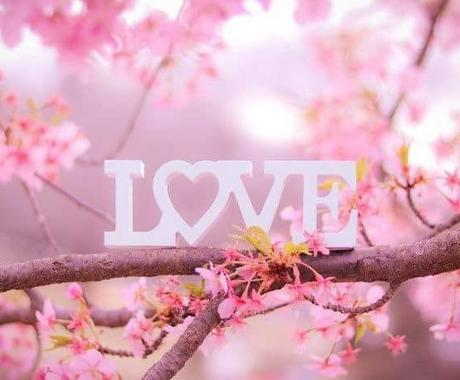 キレイな恋の相談、承ります 公認仲人・ウェディングプランナーが恋の実現を提供します。 イメージ1
