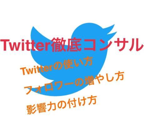 先着3名特価!Twitter収益化方法教えます Twitterを収益化させた方法を2日間で教えます!! イメージ1