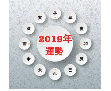 2019年のあなたの「運勢」ズバリ占います 【運気・財運・健康運・モテ期・注意点を簡潔に知りたい方へ】 イメージ1