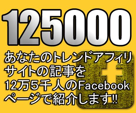 12万5千人のFacebookページ連携サイトの記事内に無期限広告を貼ります! イメージ1
