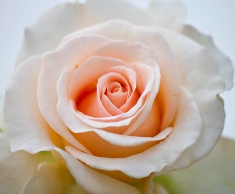 開運恋愛❤数秘術・スピリチュアルで恋愛占います 輝く明日のために❤️開運恋愛へアプローチ❤️ イメージ1