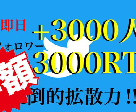 2日間でフォロワー+3000人の実績があります 【実績有り】定期的に賞金イベントを開催。RT数3000超え。 イメージ1