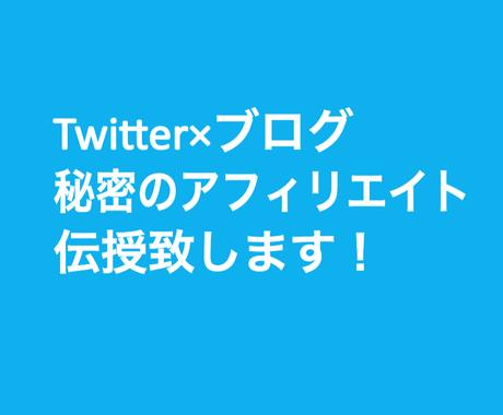 Twitter×ブログ=秘密のアフィリ伝授します 裏技的な秘密の手法をお伝えします イメージ1