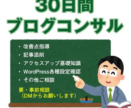 30日間WordPressブログコンサルします 質問回数無制限!丁寧解説でアクセス・収益改善を目指します イメージ1