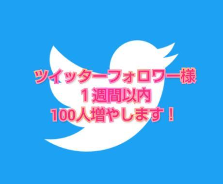 ツイッターのフォロワー様100人増やしますます ☆実績0から2ヶ月で1万人達成☆フォロワー様を大切にします イメージ1