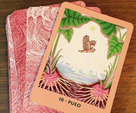 マナカード&女神のガイダンスカードを1枚引きます メッセージを聞いてみませんか? イメージ1