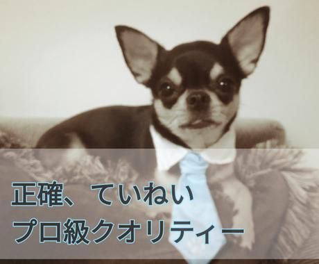 500字以下の様々な文章を【日⇔英】翻訳します ちょっとした文章を低価格で依頼したい方へ イメージ1