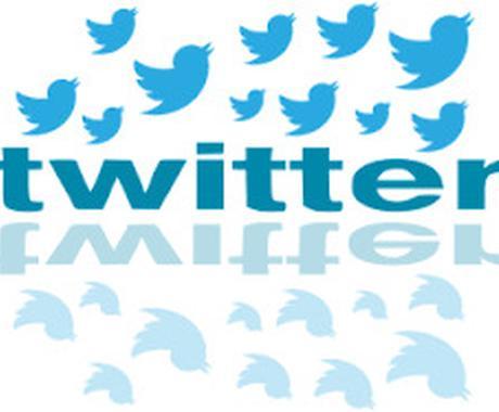 フォロワー14万人以上!宣伝・PRします 【1週間で10回つぶやきます】Twitterで拡散!PR♪ イメージ1