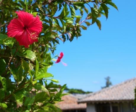 沖縄移住相談受付けます 沖縄へ移住前に知りたいことはありませんか? イメージ1