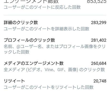 日本人フォロワー100人以上増やします Twitter集客・アクティブユーザー増やし・拡散手伝います イメージ1