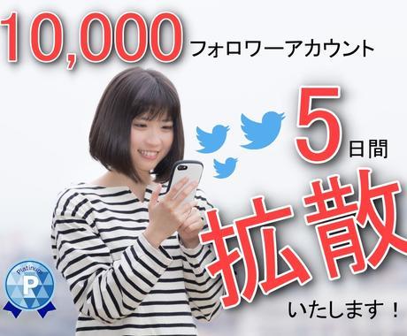 拡散・宣伝・集客!5日間Twitterで広告します 最安値!ツイッター1万人に拡散/宣伝/集客/広告/PR イメージ1