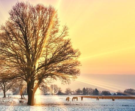 始源の光で「心」を癒します --------------------ハートヒーリング イメージ1