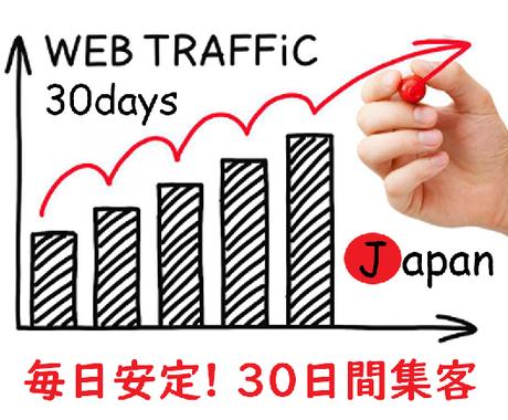 約30日!あなたのウェブサイトに本当の人集客します 日本のニッチクライアントを集客!毎日400~500人の訪問。 イメージ1