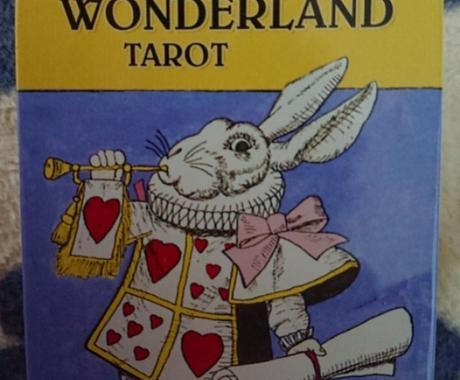 タロットカードやオラクルカード等で占います カードが伝えるメッセージであなたの選択の背中を押します。 イメージ1