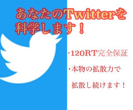 あなたのツイートを120RTまで拡散します 120リツイートになるまで拡散応援いたします。 イメージ1
