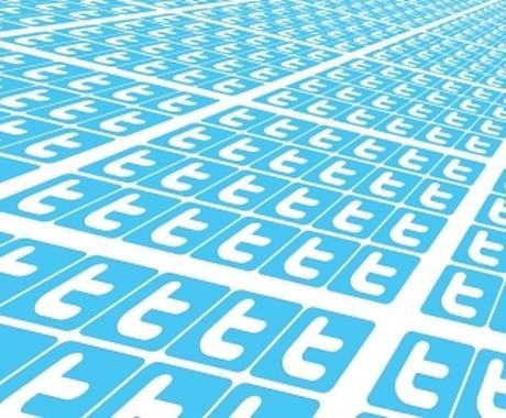 宣伝ます Twitterで6000人を超えるフォロワーに宣伝します イメージ1