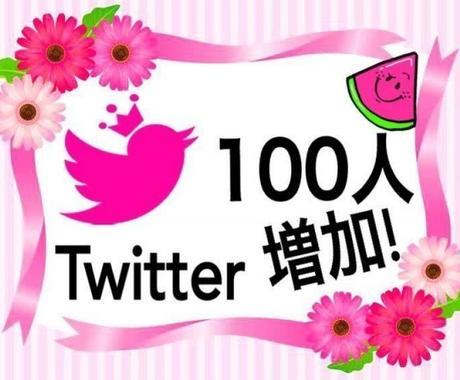 保証付き Twitter フォロワーへプロモします 【Twitter】ツイッター フォロワー 100人+ イメージ1