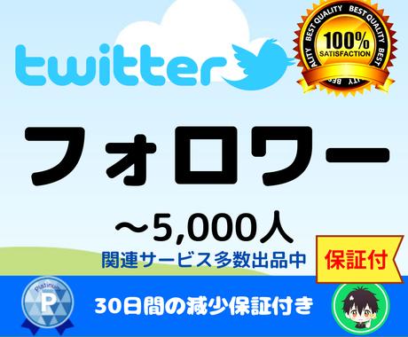 Twitterフォロワー★ツイッターのプロモします ツイッター(Twitter)フォロワー1000増えるまで宣伝 イメージ1