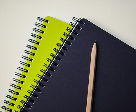 英文(レポート、論文、エッセイ、書類、その他)の添削をネティブがします! イメージ1