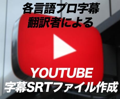 Youtubeの動画を翻訳し字幕ファイル作成します 各言語の翻訳プロと字幕ファイル作成経験者の連携で安心 イメージ1