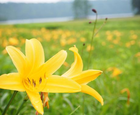 福島県を中心とした、あなたにぴったりなお出かけプランつくります! イメージ1