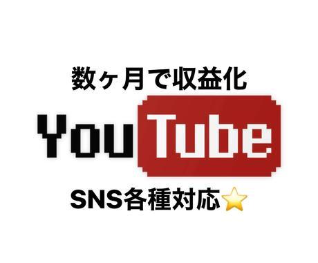 YouTube収益化を支援するツールを教えます 評価10までは5000円!登録者、再生回数UP イメージ1