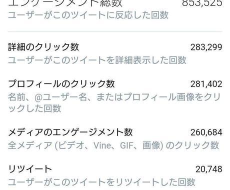 日本人フォロワー300人以上増やします Twitter集客・日本人フォロワー増やし・拡散手伝います イメージ1