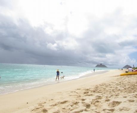 ハワイの情報サイトで宣伝します ハワイの情報サイトで広告を出したい。 イメージ1