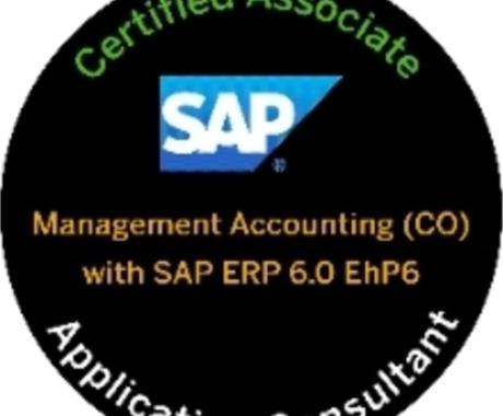 SAPの基礎知識を教えます SAP初心者にSAPの概要を教えます。 イメージ1