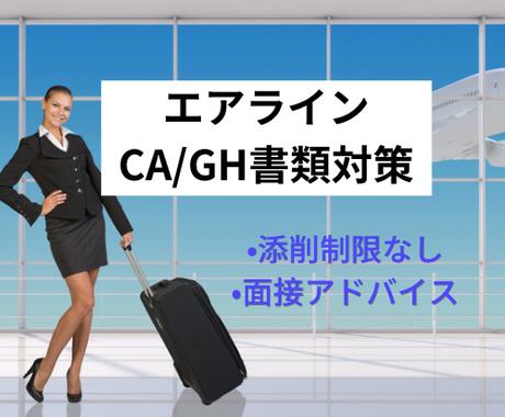 エアライン★履歴書ES添削、自己分析サポートします 元日系外資CAが直接添削します。面接のポイント指導付き! イメージ1