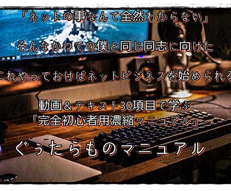アフィリエイト、初心者用プログラムになります 家で一人、PC1台で稼ぐ通信レッスンを破格で公開 イメージ1