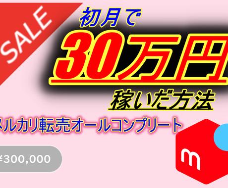 初月に30万円売り上げた転売ノウハウ全て放出します 出品から発送までを図入りで解説(モノレート終了に対応) イメージ1