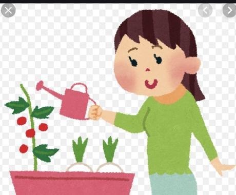 C楽ちん節約家庭菜園と希望PDF2個オマケ付ます 肥料代0円で草抜きも不要なのに何故か豊作になる土作りの秘密 イメージ1