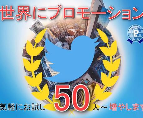 50人保証!ツイッターのフォロワー自然に増やします 世界中にプロモーション!Twitter拡散/宣伝/集客/広告 イメージ1