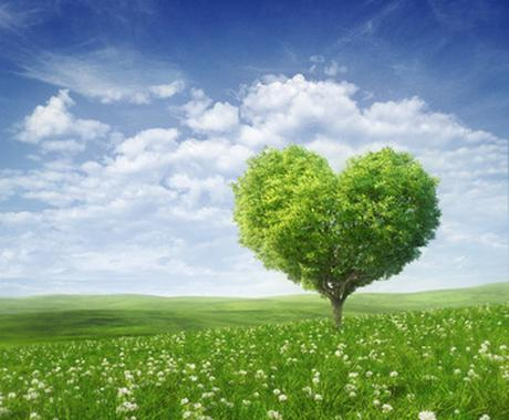 恋愛、結婚、仕事、人間関係・・あなたの真実を四柱推命で読み解きます☆ イメージ1