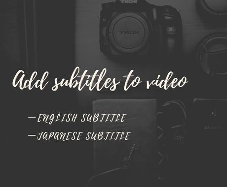 動画字幕の翻訳をいたします Add subtitles to your video イメージ1
