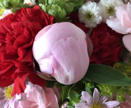 恋愛・片思いの行方をタロット・オラクルで占います まっすぐに結果をお伝えします!心が元気になるお花の画像付き イメージ1