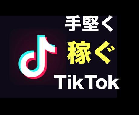 TikTokを活用して堅実に稼ぐ方法を教えます 広告収入だけじゃない、効果的な運用戦略を伝授します。 イメージ1
