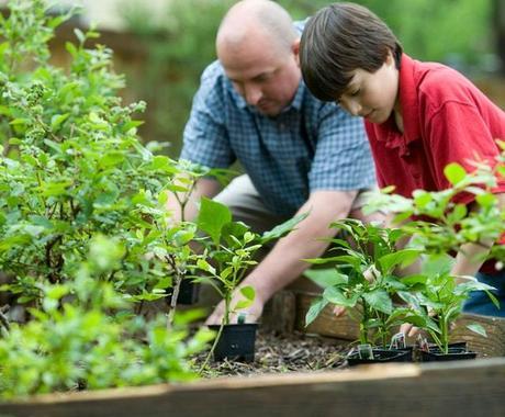 園芸療法って何?認定園芸療法士がサクっと教えます 植物を使って人を癒す園芸療法。身近な草花で出来ちゃいます♪ イメージ1