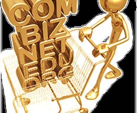 【200件にUP!】超貴重なオールドドメインを発掘&品質調査済みのリストをお渡しします! イメージ1